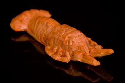 Vegetarian Lobster